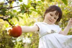 Zdjęcie przedstawia dziewczynkę sięgającą po jabłko.